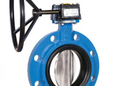 Type 1130 mono-flanged concentric butterfly valve